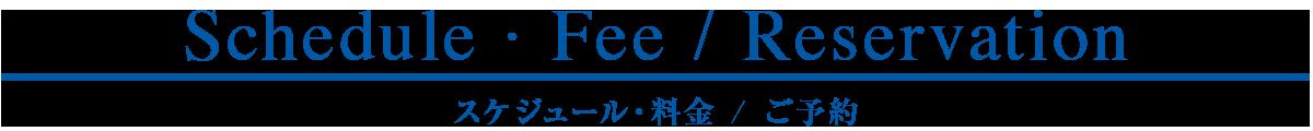 与論島の宿・ホテル・旅館・貸し別荘宿泊料金・車種